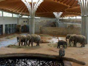 Ihr Hotel am Kölner Zoo
